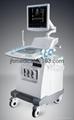 Full Digital Color Doppler Ultrasound