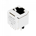 SI-16004-F Vertical RJ45 Connector with Integrated Magnetics ,Without LED