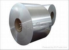 309S 310S不鏽鋼帶