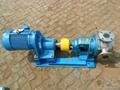 NYP高粘度转子泵 2