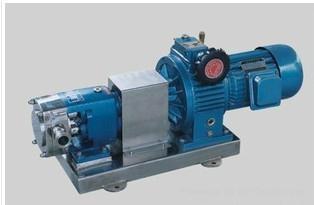 不锈钢转子泵 1