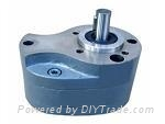 液压齿轮泵 2