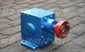锅炉燃烧点火专用泵 4