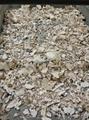 bone processor for crematorium