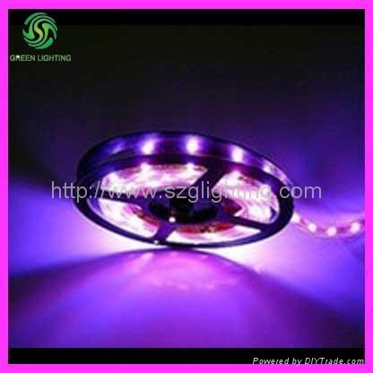 GL-005LS-5050-A Led strip light