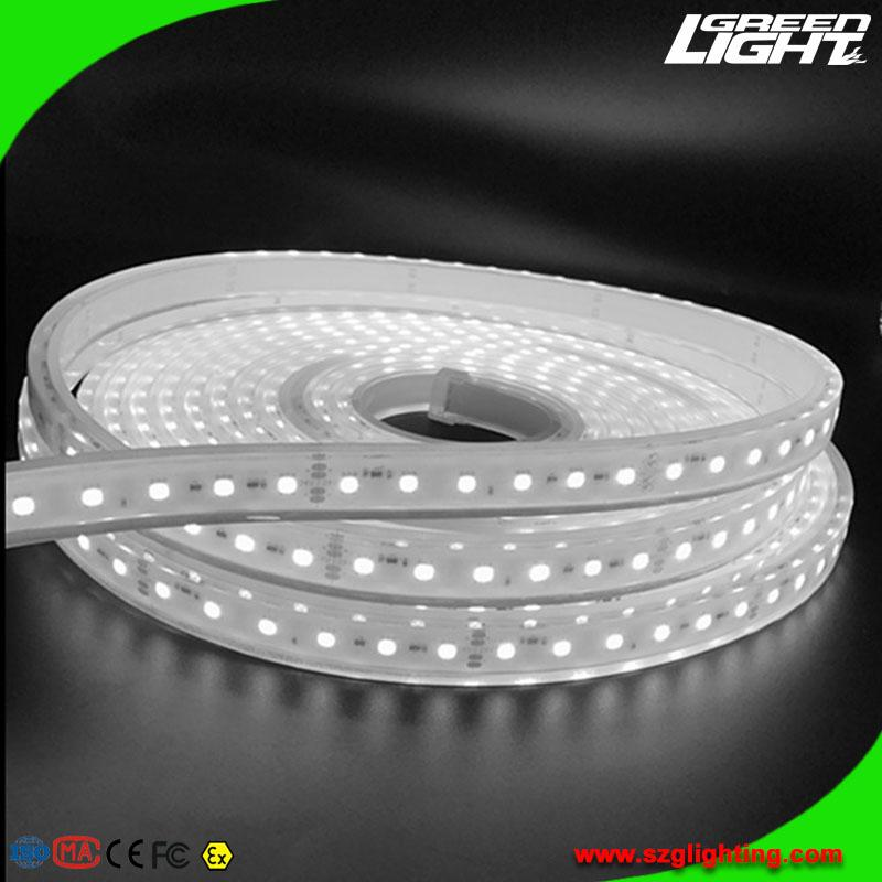 Waterproof IP68 LED Flexible Light Strip for Underground Mines Lighting  1