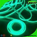 Silicone IP68 12W/M RGB SMD5050 Flexible Led Mining Lights