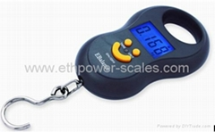 Electric Hanging Scale with 50kg Capacity