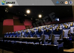 Private Customized 4D Cinema System , Best Way To Update 3D Cinema And Get Profi (Hot Product - 1*)