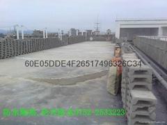 惠州市倫興建築防水工程有限公司