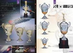 欧美塑料奖杯 外贸奖杯