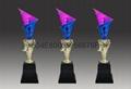 廣東塑膠獎杯 中國獎杯 2