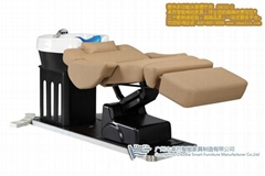 Functional electrical washing chair and massage bed
