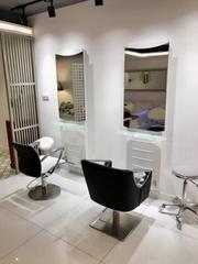 Topgrade salon hydraulic chair
