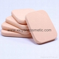 XINYANMEI Supply Cosmetic plush puff  Wet sponge Can OEM/ODM
