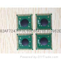 XC8083 USB/PS2标准键盘控制芯片