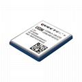 Quectel UMTS/HSPA 3G module UG96 1