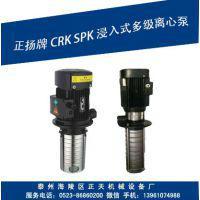 SPK泵 CRK TMR多级离