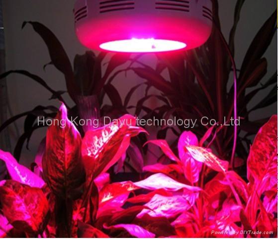 led grow lights importers Wholesale dealer 1