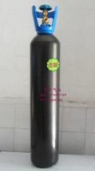 杭州10L氮氣鋼瓶