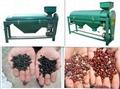 Bean Polishing Machine (agricultural machinery) 3