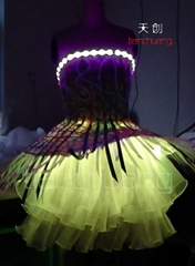 DMX512 LED Light & Fiber Optic Feather Skirt