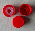 Plastic Lid and Insert for Oil Bottles