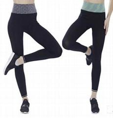 速干排汗瑜伽裤女装高腰束身运动跑步裤九分紧身打底