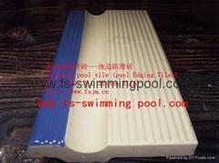 標準泳池磚