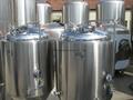 1000L beer fermentation tanks 2