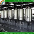stainless steel beer fermenters 300 liter