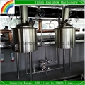 100L home brewing equipment for pub