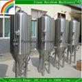 100 liter per batch restaurant micro brewery plant