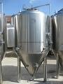 500L/1000L beer fermentation tank 4