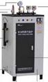 Electric- steam boiler