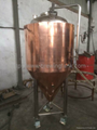 200L mini brewery equipment, beer brewing system