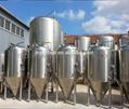 500 liter fermentation tank, conical 500L tank, beer fermenter