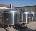 20HL Craft beer brewery equipment