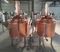 300l 500l Micro Brewery Equipment Beer Machine Rm300l