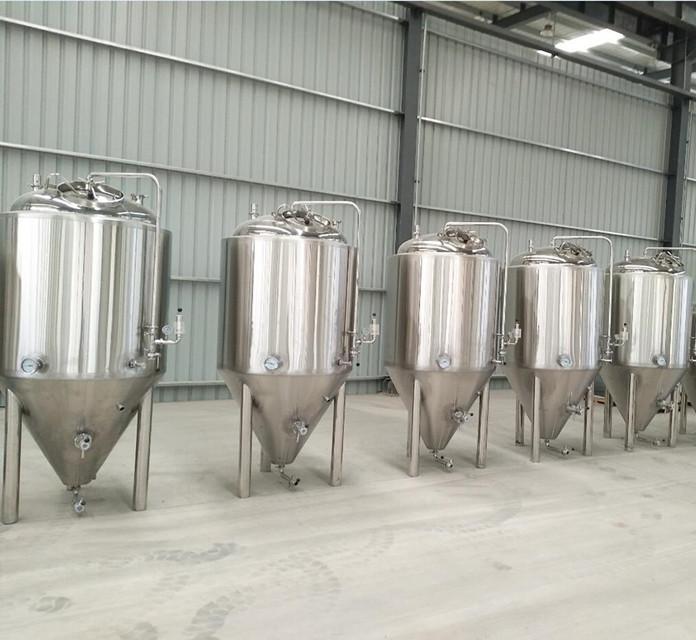 500L/1000L beer fermentation tank 2