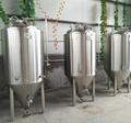 500L/1000L beer fermentation tank 3