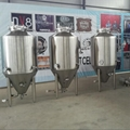 300L Craft Beer Brewing Equipment for Pub