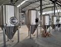 1200L beer brewing fermenter / conical fermenter tank