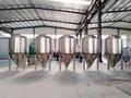 Beer fermenter for USA