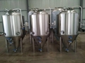 Water jacketed 500l brewhouse for Norway