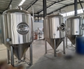 500L Hotel beer brewery equipment, craft beer making machine 5