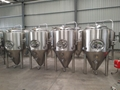 1000L Beer fermenting vessels, fermentation tank