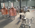 250L Craft beer brew tank, Microbrewery equipment