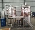 Brewpub 500L complete system