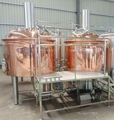 Craft beer brewery equip